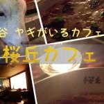wpid-20130916094836.jpg