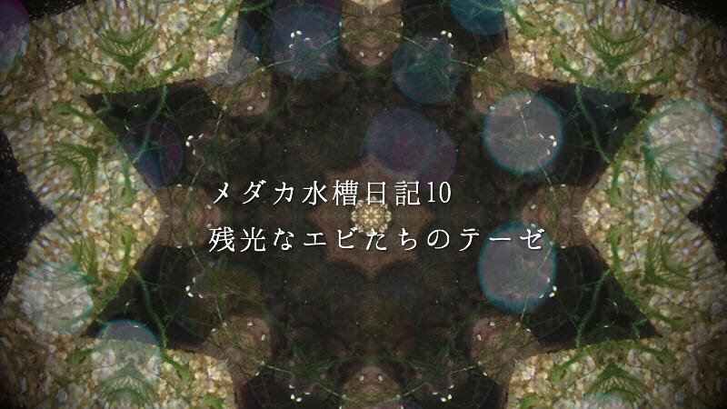 wpid-20150925121403.jpg